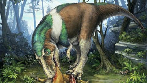Палеонтологи доказали, что т…