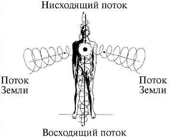 Энергетические потоки и человек