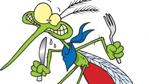 Какие люди кажутся комарам с…