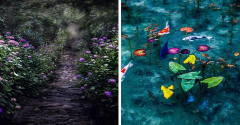 Япония в сезон дождей: фотог…