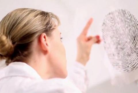 Читаем характер человека по отпечаткам пальцев
