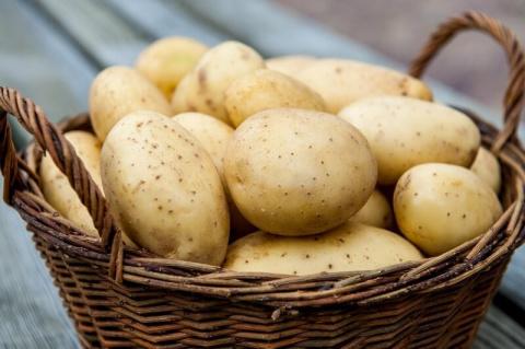 9 магических свойств картофеля, о которых вы не догадывались!