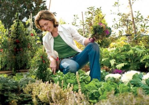 10 практичных советов для садоводов. Кажется, № 4 решит твою главную проблему…