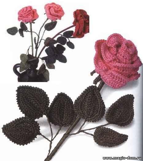 Самая красивая Роза, Пуговиц…
