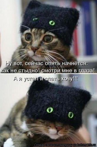 С котоматрицей веселей!