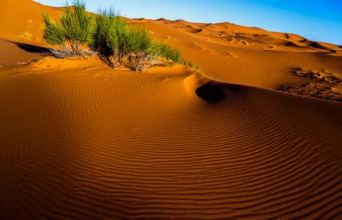 ПУТЕШЕСТВИЯ. Жемчужина Магриба. Марокко - часть 2