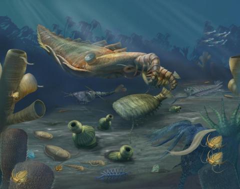 Ученые узнали какие живые существа способны выжить после Апокалипсиса