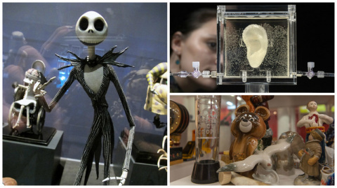 Самые невероятные выставки мира