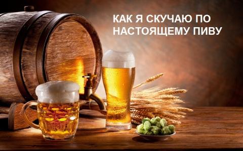 Поговорим о пиве .....