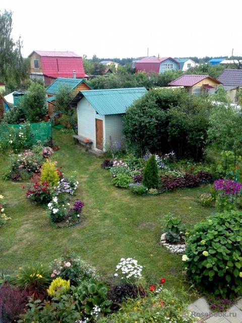 Сад Ирины
