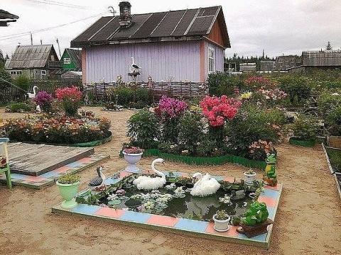 Дачный двор. Какая красота!