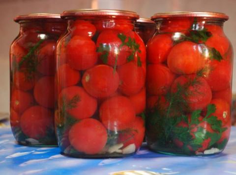 10 рецептов из помидоров на зиму. 4 рецепта из мяса и рыбы на шпажках в духовке