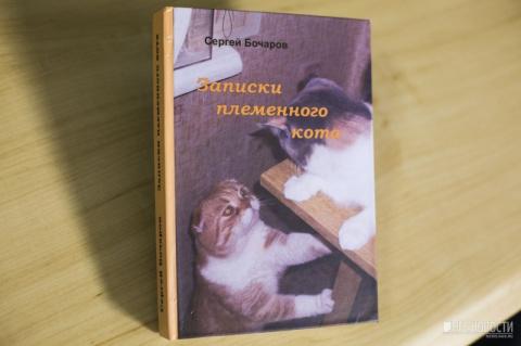Новосибирец написал книгу в память об умершем от рака коте