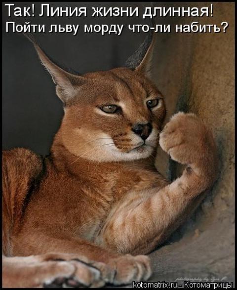 Я мстю и мстя моя жестока )))
