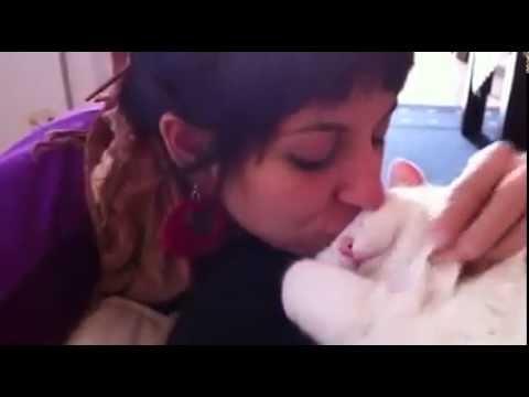 Девушка поцеловала своего ко…