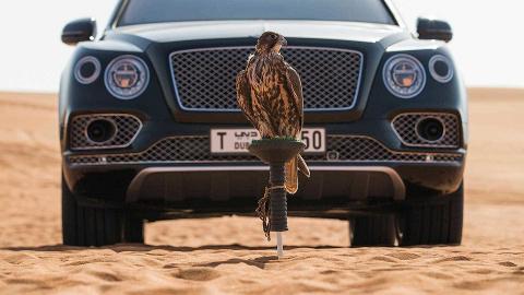 Bentley добавила всалон Ben…
