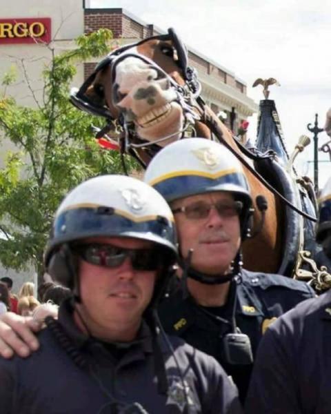 Полицейские приколы (40 фото)