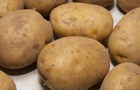 Жителей РФ ожидает картофель…