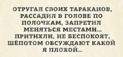 СОЛЯНКА (с)
