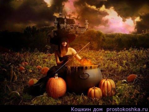 Хэллоуин - обряды и заговоры