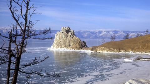 Монголо-китайские проекты и  и Год экологии в России