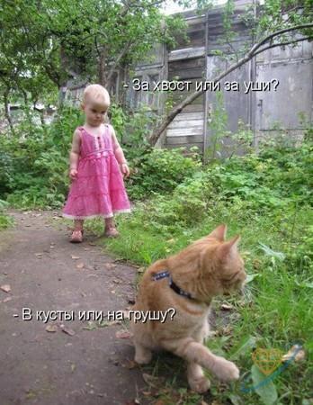 http://mtdata.ru/u1/photoD27B/20900857163-0/big.jpeg