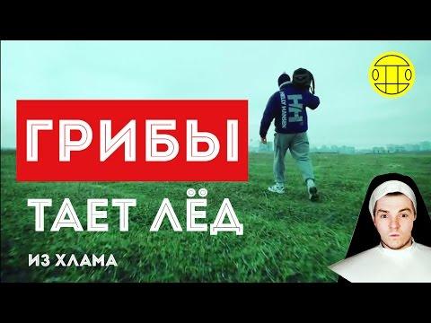 Видеоблогер Виталька Кроха с…
