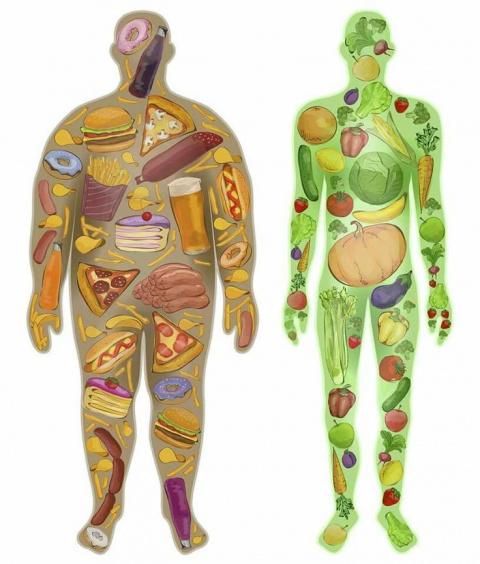 Первое, второе и компот: прямой путь к ожирению