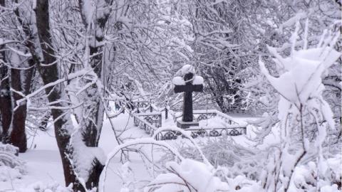 Девушка решила срезать дорогу через кладбище. Кто ж знал, ЧТО из этого получится...