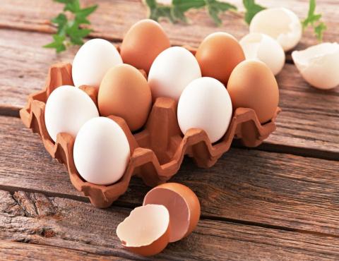 5 свойств куриного яйца о ко…