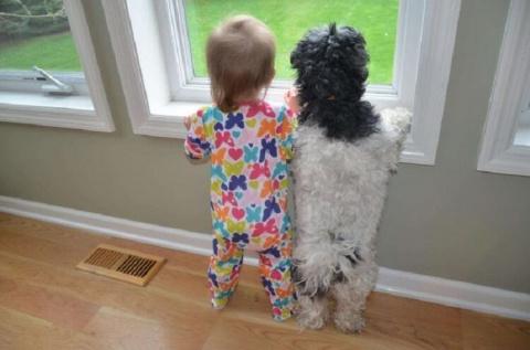 Умилительные фото детей с животными
