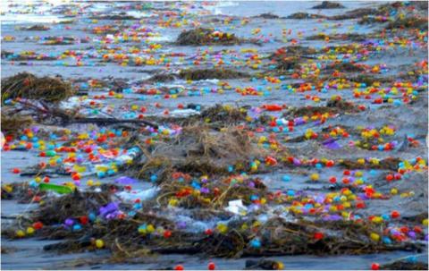 Новогодний сюрприз - в Германии на берег моря вынесло десятки тысяч яиц с игрушками