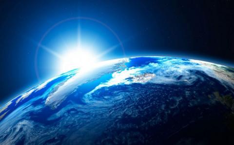 Сложные формы жизни на Земле…