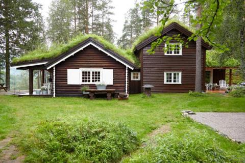 Дом с видом на лес. Хотели бы себе такой?