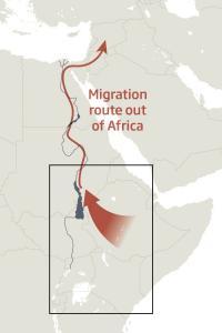 Древнее озеро могло помочь людям вырваться из Африки