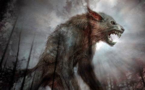 10 интересных фактов о Чупакабре