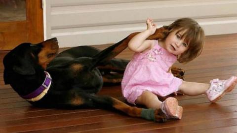 Двухлетняя девочка играла с …
