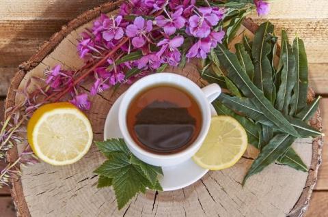 Как самостоятельно получить настоящий чай из кипрея