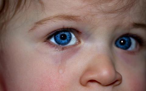 На Украине в 2017 пропали без вести 5000 детей