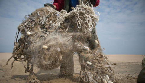 Как волонтеры спасают Байкал от мусора