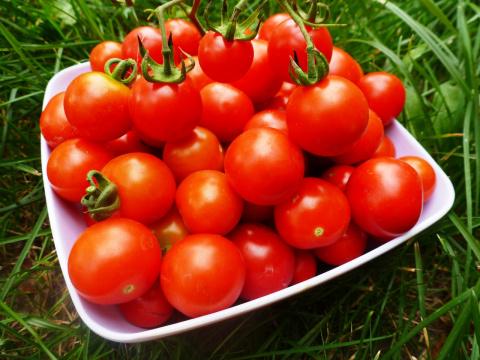 Чтобы томаты были сладкими