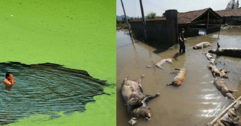 Шокирующие фотосвидетельства: самые грязные реки мира!