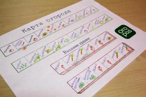 20 обязательных пунктов, которые должен выполнять каждый огородник