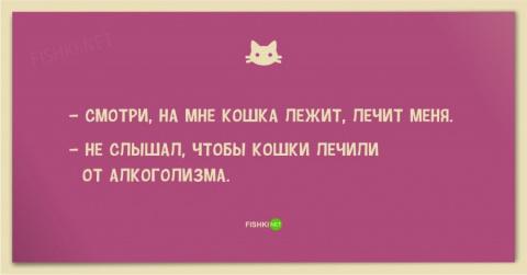 Смешные анекдоты про кошек и котов