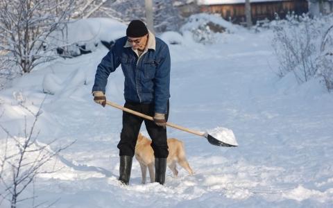 Что делать дачнику зимой? Несколько идей!