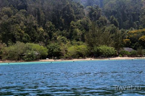 Борнео: национальный парк Ту…