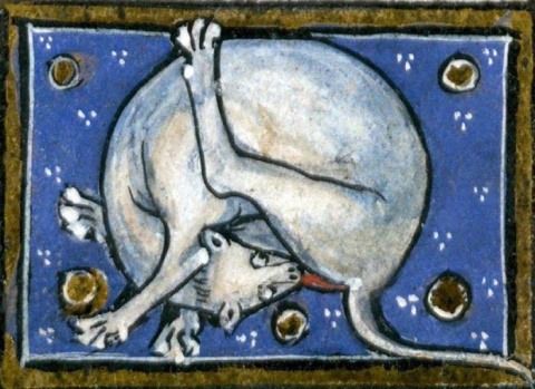 10 странных направлений в средневековом искусстве, которые пока остаются загадкой