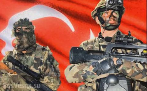 Восток — дело тонкое: почему власти Сирии не возражают против турецкого вторжения