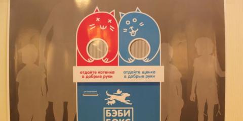 Зачем москвичам нужны бэби-б…
