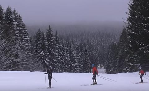 Петрозаводчанин запечатлел на видео лыжную прогулку на Кургане